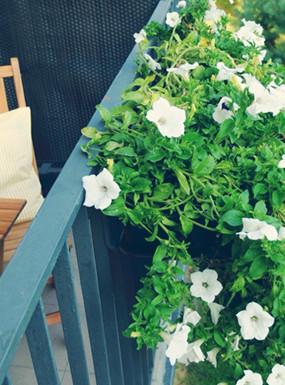 Zorganizuj się na wiosnę: wiosenne porządki na balkonie
