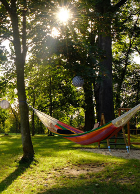 Borówkowe Domki – relaks totalny blisko miasta